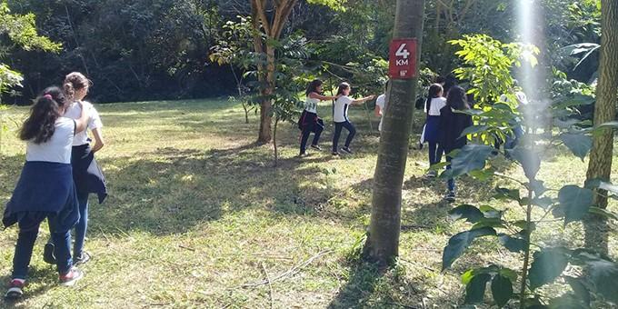 floresta_escola_2